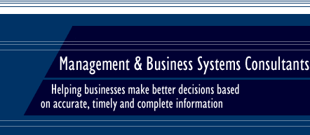 Management & Business Systems Consultants